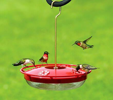 Comfort Fit Hummingbird Feeder