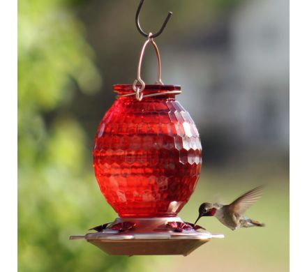 Hummingbird Feeder with Rose Gold Accents