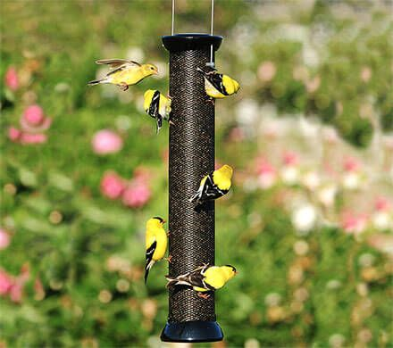 Onyx Clever Clean Finch Feeder