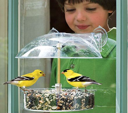 Flexible Window Bird Feeder