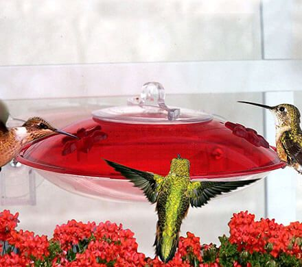 Easy Fill Window Hummingbird Feeder