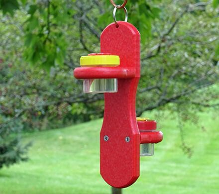 Double Dots Hummingbird Feeder
