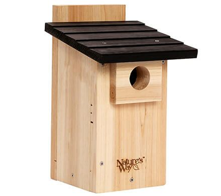 Mesh Floor Bluebird House