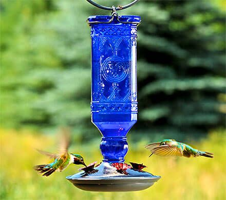 Cobalt Blue Square Hummingbird Feeder