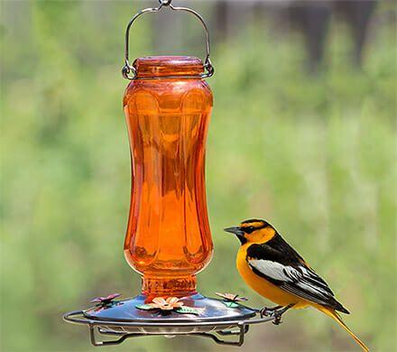 Orange Glass Oriole Bird Feeder