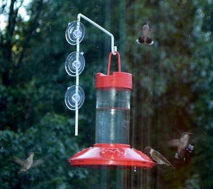 Hummingbird Feeder With Window Hanger
