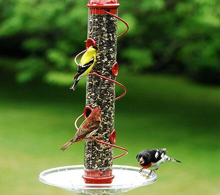 Red Spiral Bird Feeder