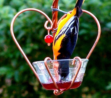 Heart-Shaped Bird Feeder