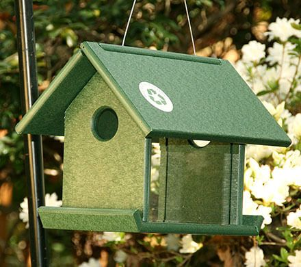 Covered Mealworm Feeder