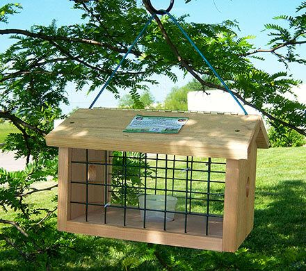 Covered Bluebird Jail Feeder