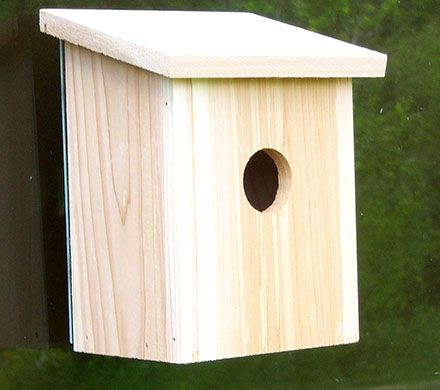 Perch-Free Window Birdhouse