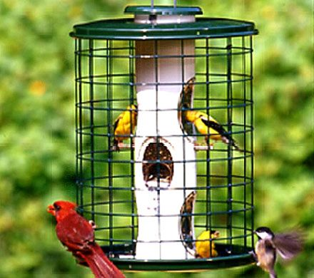 Heavy Duty Cage Seed Feeder