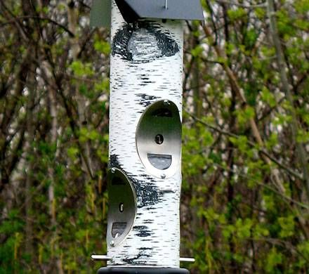 Birch Log Thistle Seed Feeder