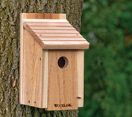 Rustic Cedar Bluebird House