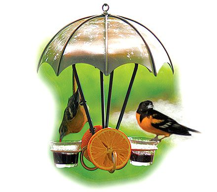 Brushed Copper Oriole Bird Feeder