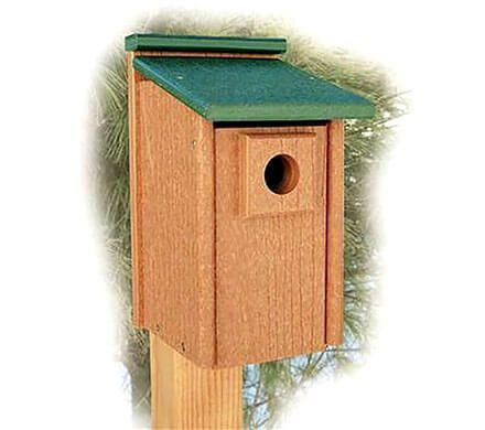 Environmentally Friendly Bluebird Home