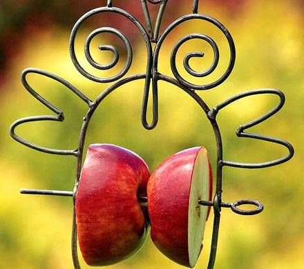 Owl-Shaped Fruit Feeder