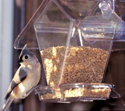 Window Cafe Hopper
