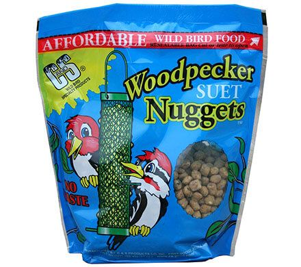 Suet Nuggets for Woodpeckers