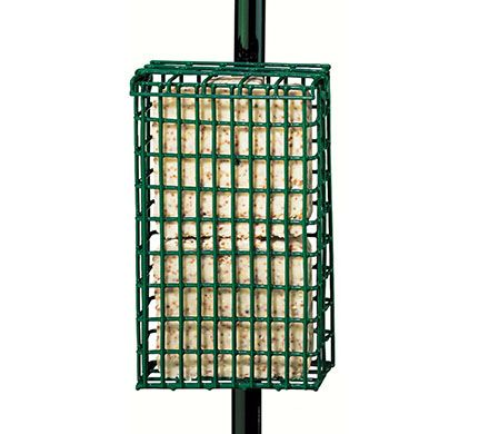 Pole Mounting Suet Feeder