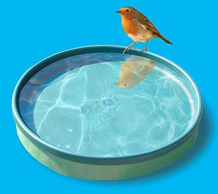 3-in-1 Heated Birdbath