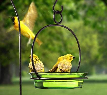 Cuban Bowl Birdbath