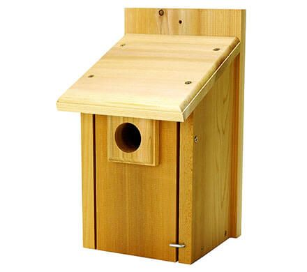 Wood Bluebird House with Guard