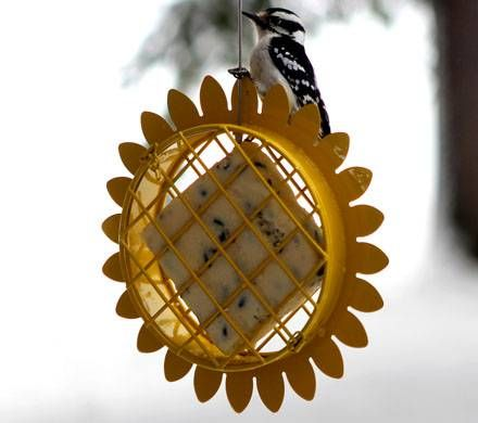 Metal Sunflower Suet Feeder