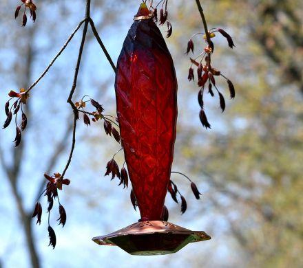 Red Crystal Glass Hummingbird Feeder