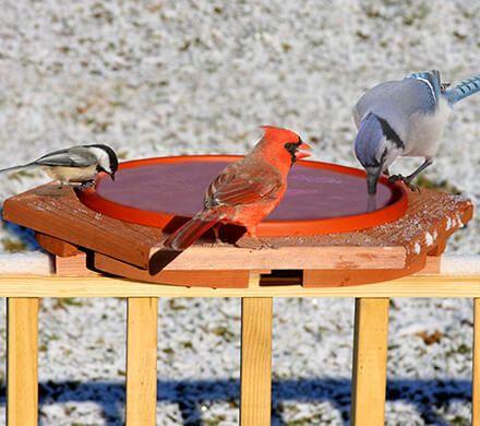 Heated Cedar Deck Birdbath