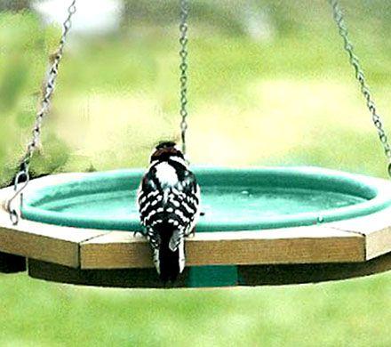Cedar Birdbath with Green Pan