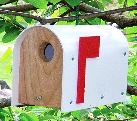 Mailbox Birdhouse