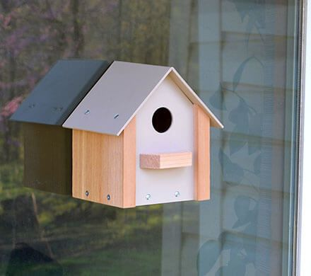 Window Bird House with Clear Backing