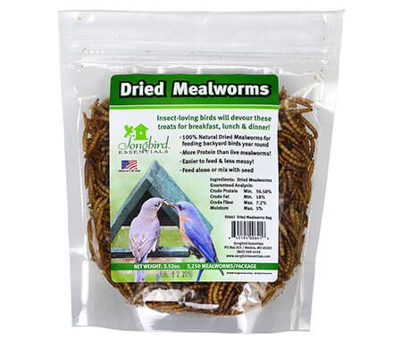 1/3 lb. of Dried Mealworms