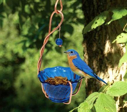 Handcrafted Bluebird Feeder