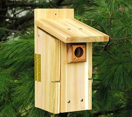 Premier Bluebird Nesting Box