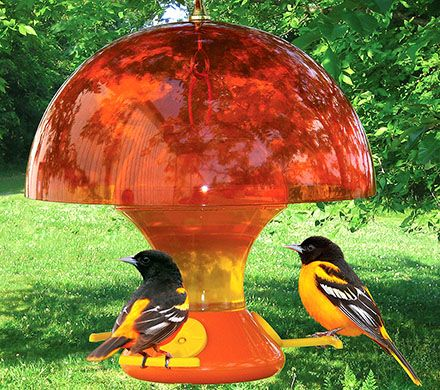 Orange Oriole Feeder Cover